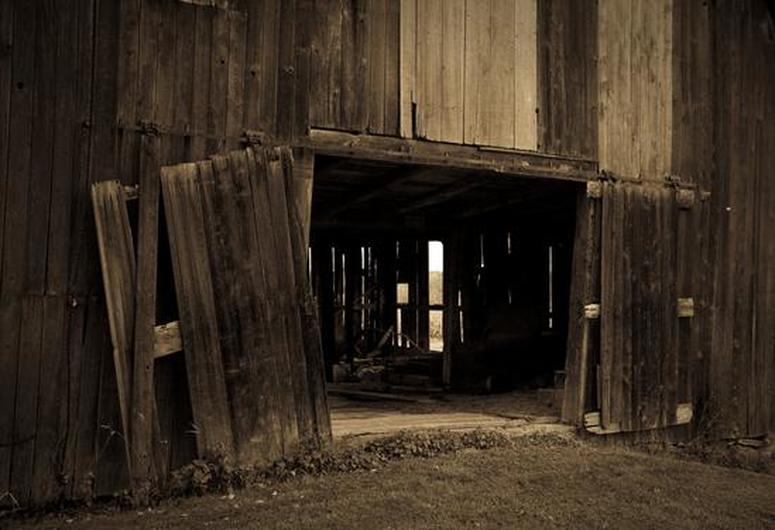 Old Wood Barn Sepia Wall Art Photography