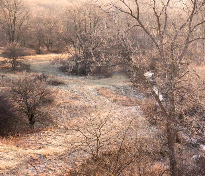 Frosted and Frozen Killbuck Creek