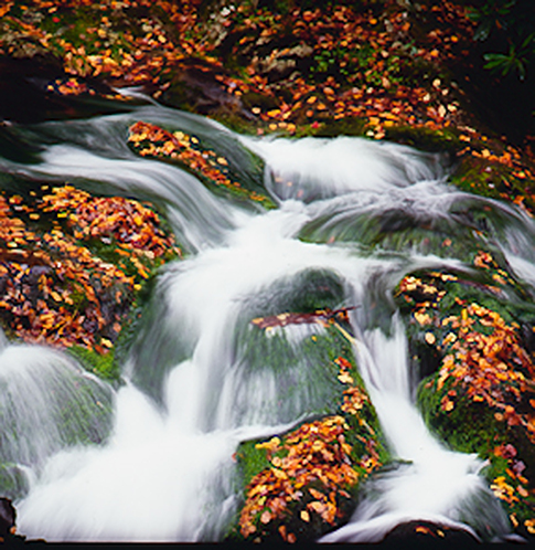 Fall scenery waterfall Cades Cove Great Smoky Mountains Nature Photography