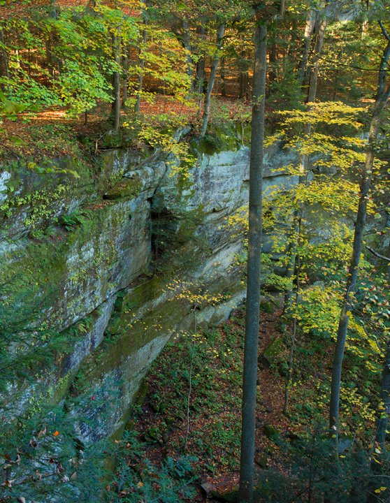 Fall Scenery Cantwell Cliff Hocking Hills