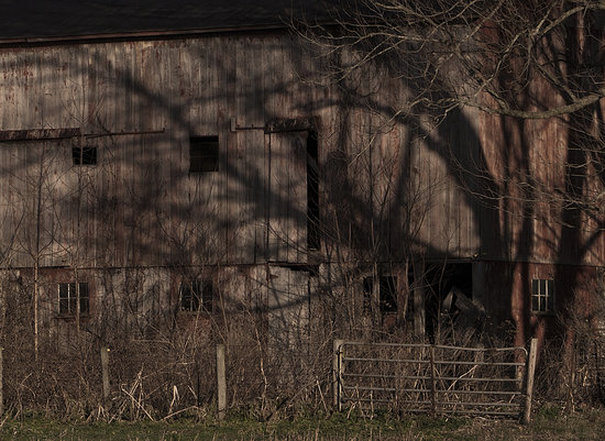 Ohio barn with tree and shadows