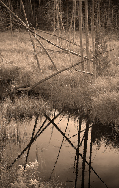Sepia photography Killbuck Creek