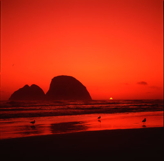Oregon Beach Red Sunset Picture