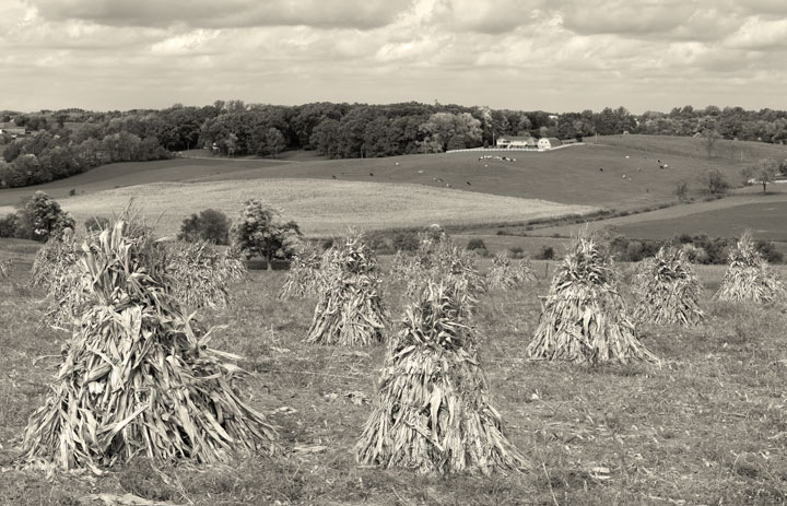 Ohio Amish Farmland Sepia Photography
