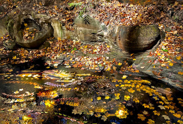 Ohio fall scenery High Banks Metro Park Columbus Nature Photography