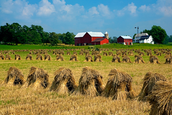 Ohio Farmland Scenic Photography