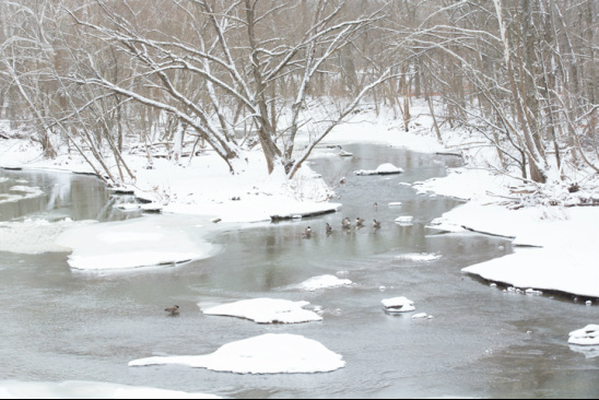 Olentangy River Beautiful Ohio Winter Scenery
