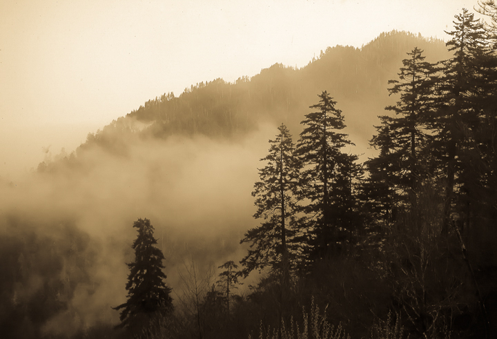 Great Smoky Mountains Scenery Nature Photography