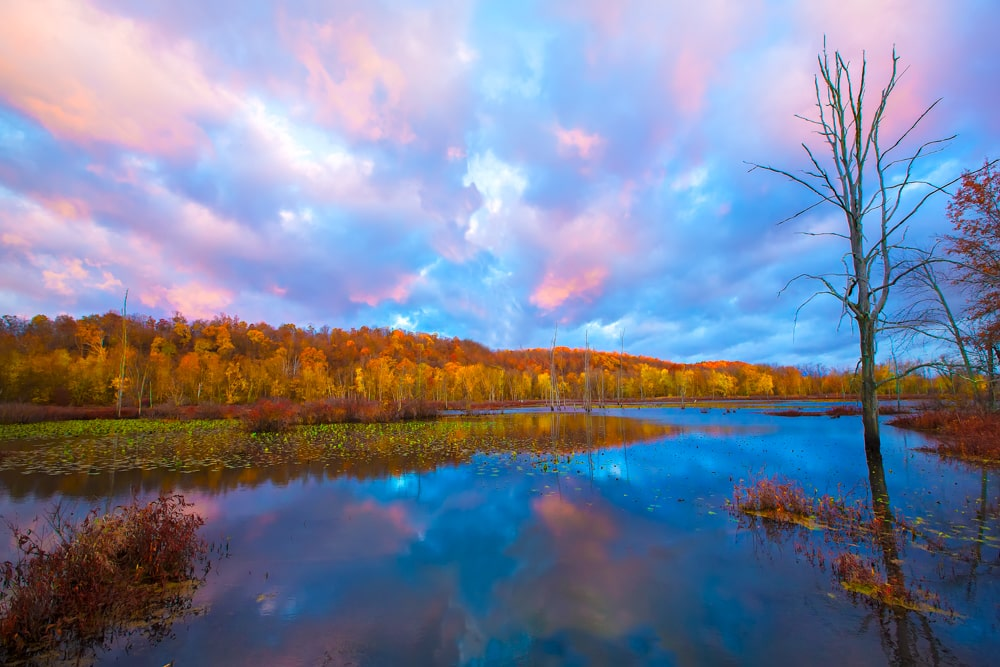 Colorful Sunset at Killbuck Wetlands Nature Preserve Holmes County, Ohio
